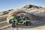 Arctic Cat Wildcat UTV