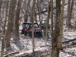 Polaris RZR in the trees