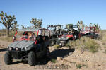 Joshua Trees behind our Side by side vehicles