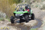 Arctic Cat Wildcat in the Pine Nut Mountains