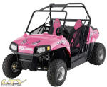 "Limited Edition RZR 170 ""Pink Power"""
