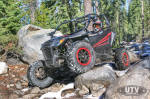 Arctic Cat Wildcat Sport